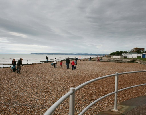 Litter-picking at the stretching beach at Bexhill seafront.